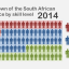 The South African workforce shifts towards skilled jobs, but patterns still differ between race groups