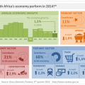 Economic growth slows in 2014