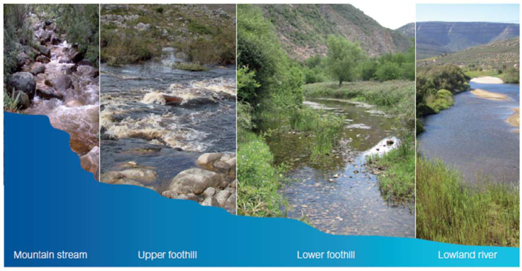 Four Facts About Our Rivers You Probably Didnt Know Statistics - African rivers by length
